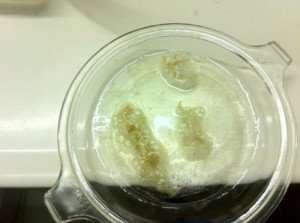 hydrogen-peroxide-on-biofilm